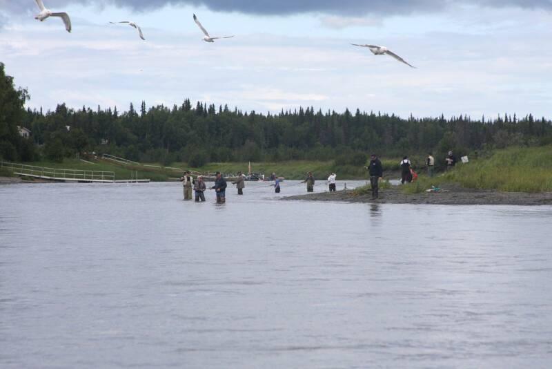 Kenai river fishing 4 for Kenai river fishing