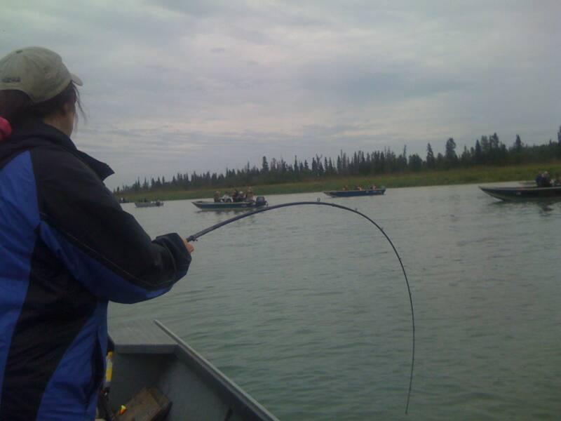 Kenai river fishing 5 for Kenai river fishing
